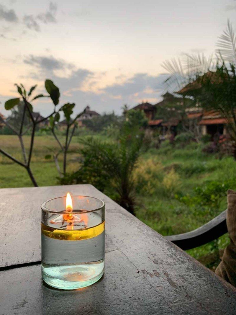 Ubud, Bali   Savitri WIlder