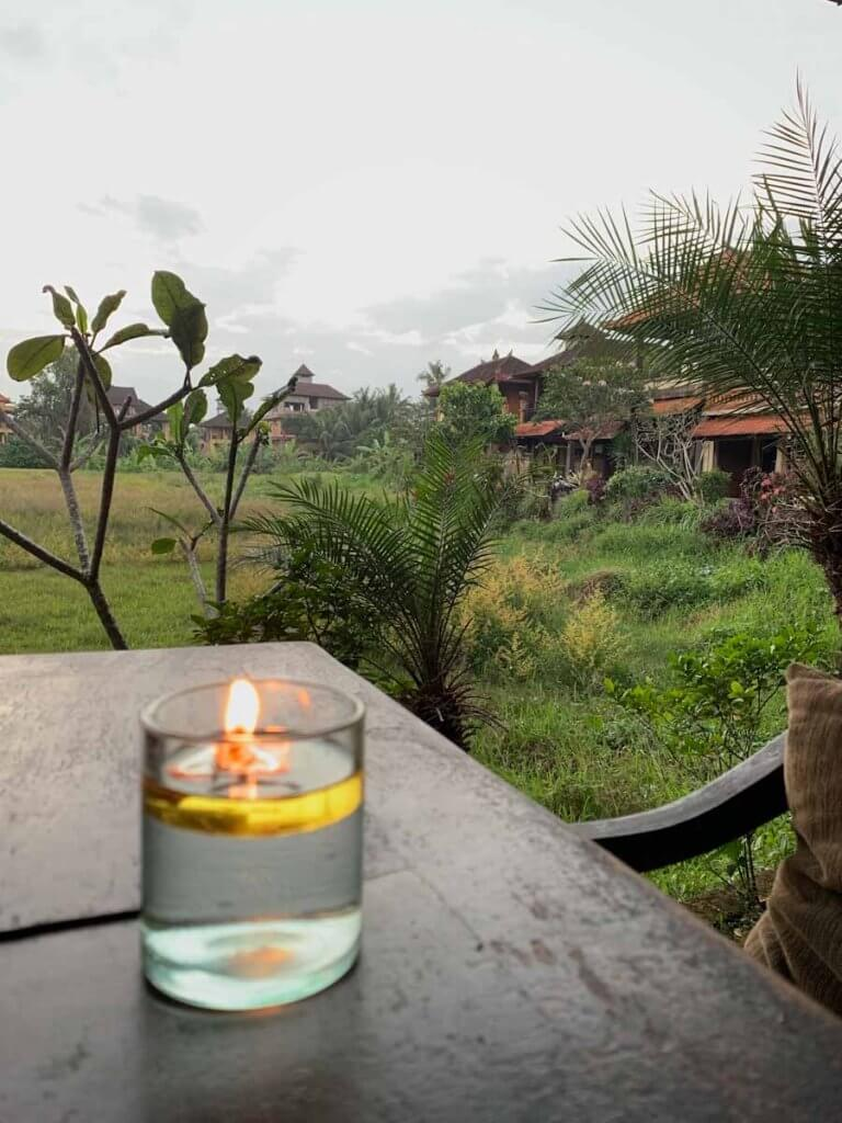Ubud, Bali | Savitri WIlder